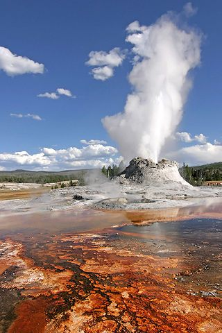 Yellowstone gyser